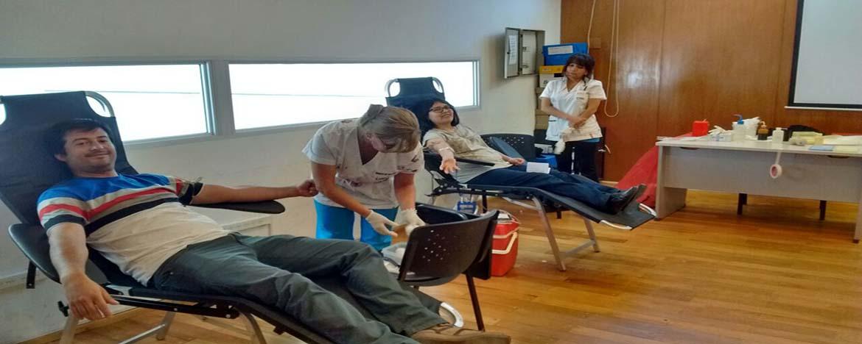 personas recostadas donando sangre